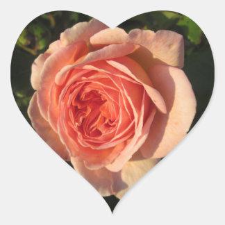 Rose Beautiful Pink Flower Heart Sticker