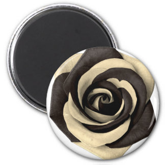 Rose Black Magnet