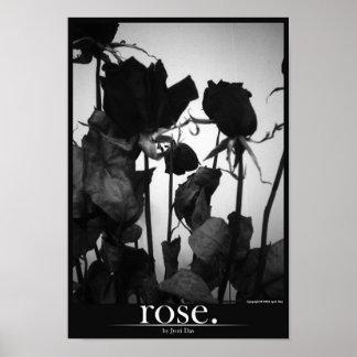 rose [border] poster