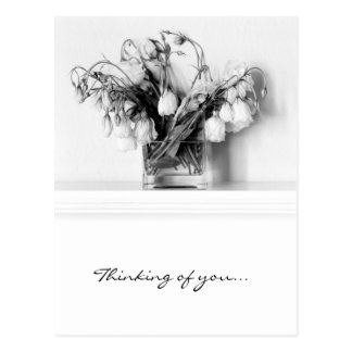 Rose Bouquet in Black White Post Card