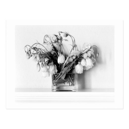 Rose Bouquet in Black & White Post Cards