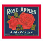 Rose Brand Apples Print
