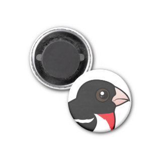 Rose-breasted Grosbeak 3 Cm Round Magnet
