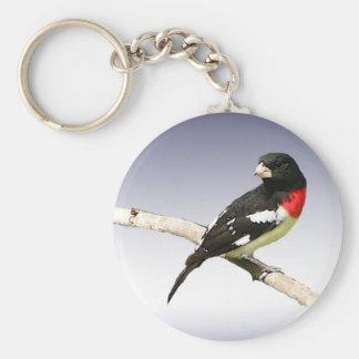 Rose-breasted Grosbeak Key Ring