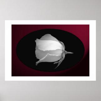 Rose Bud (Black & White) Print