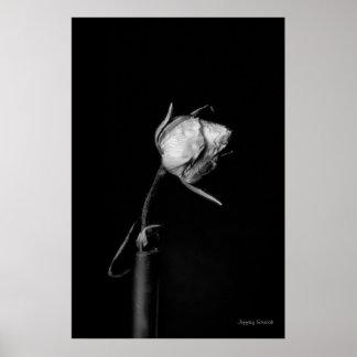 Rose bud print