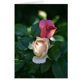 Rose Buds Card