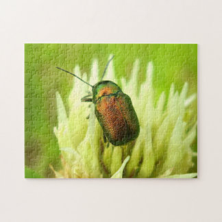 Rose Chafer Photo Puzzle with Gift Box