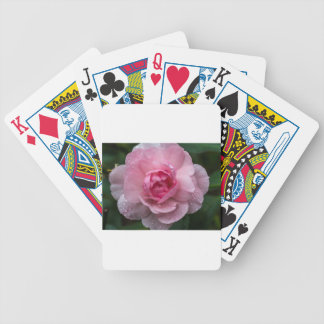 Rose drops bicycle playing cards