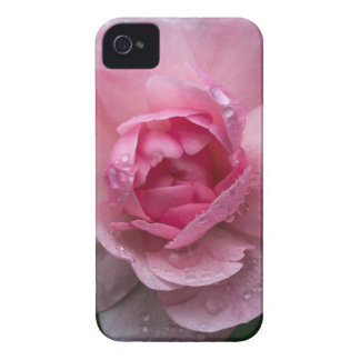 Rose drops iPhone 4 Case-Mate cases