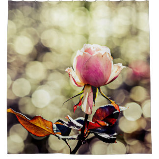 Rose Flower - Classy Gal Shower Curtain