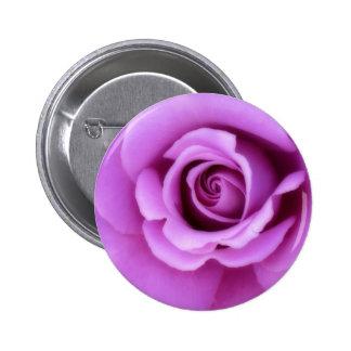 Rose Flower Lavender Purple Pink pretty floral Pin