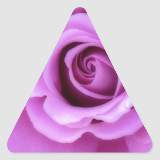 Rose Flower Lavender Purple Pink pretty floral Triangle Sticker