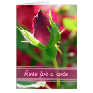 Rose for a rose red rose bud card