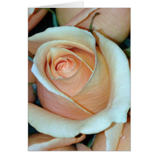 Rose Frameable All Occassion Card 5x7