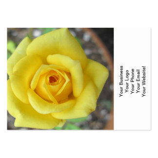 Rose Garden Flower Mini Yellow Business Cards