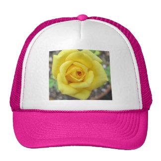 Rose Garden Flower Mini Yellow Cap