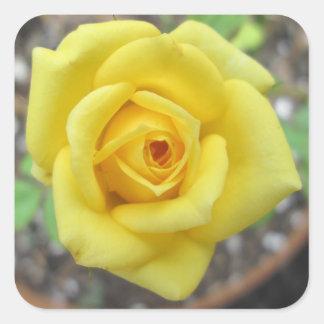 Rose Garden Flower Mini Yellow Stickers