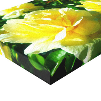 Rose Gardens Canvas Print