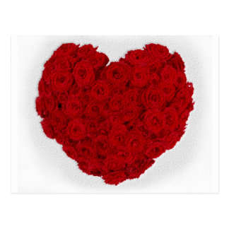 Rose heart shape postcard