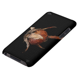 Rose Hip iPod Touch Cases