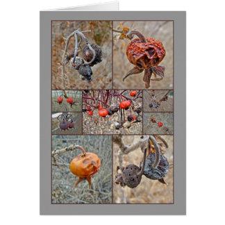 Rose Hip Collage Greeting Card