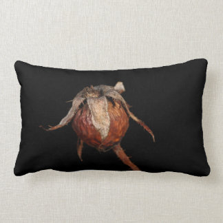 Rose Hip Cushion