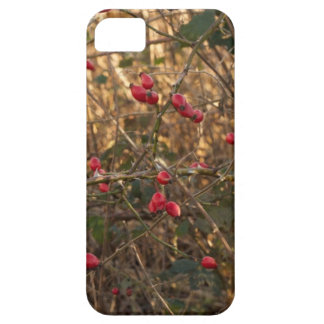 Rose Hip Gadget Cover iPhone 5 Covers