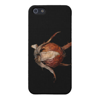 Rose Hip iPhone 5 Cover