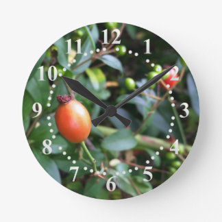 Rose hip ripen clock
