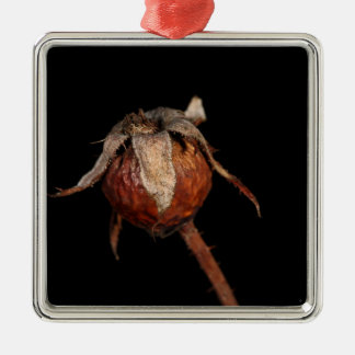Rose Hip Silver-Colored Square Decoration