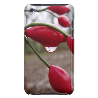 Rose Hips And Rain iPod Touch Cover