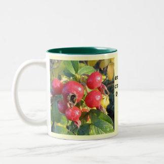 Rose hips mug