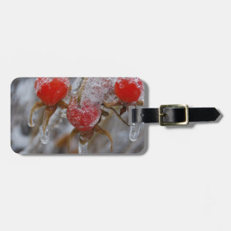 Rose Hips Under Ice Bag Tags
