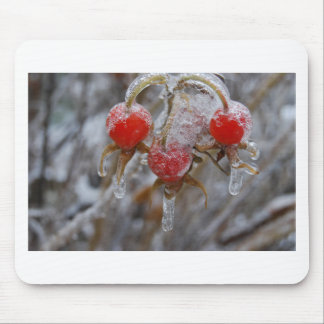 Rose Hips Under Ice Mousepads