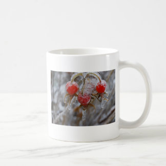 Rose Hips Under Ice Coffee Mug