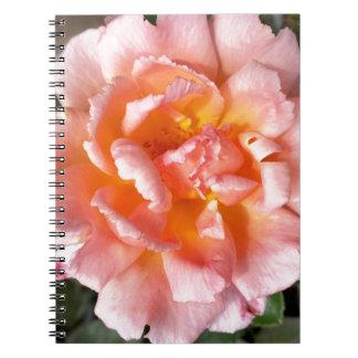 rose in autumn notebook