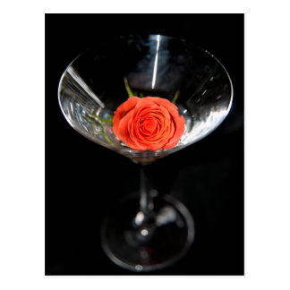 Rose in glass  ( without text ) postcard