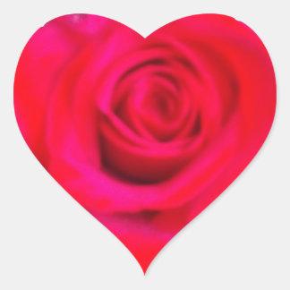 Rose in Heart Heart Sticker