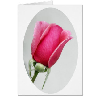 Rose in Oval Card