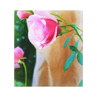 Rose in the Garden Stretched Canvas Print