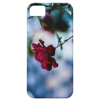 Rose iPhone 5 Case