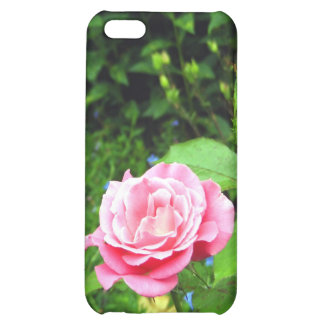 Rose Case For iPhone 5C