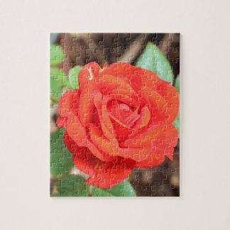 rose jigsaw puzzle