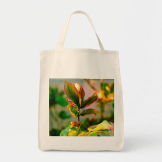 Rose Leaf Bags
