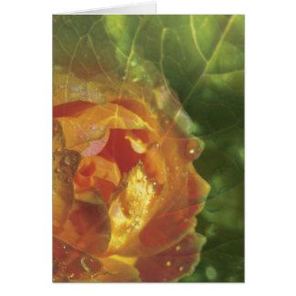 Rose & Leaf Montage Blank Greeting Card