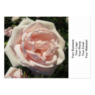Rose Light Pink Pack Of Chubby Business Cards