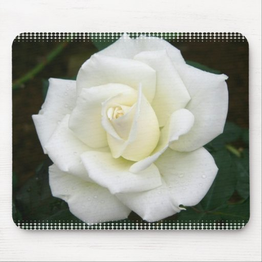 Rose Meanings Mouse Pad