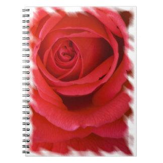 Rose Notebook 4