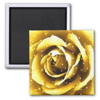Rose of gold_ refrigerator magnets